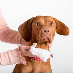 Pet Head Paw & Body Wipes chusteczki do pielęgnacji 50szt