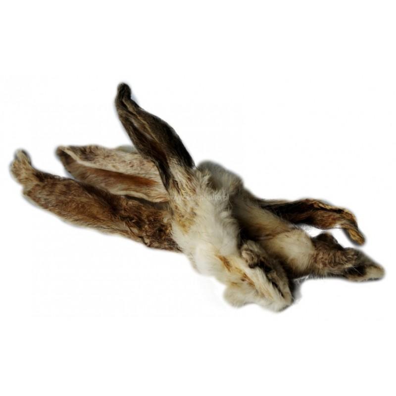 Ucho królicze z futrem - Przysmak naturalny dla psa