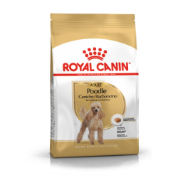Royal canin Poodle