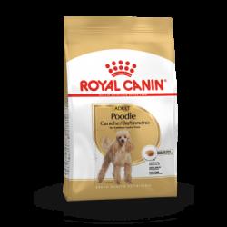 Royal canin Poodle