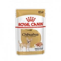 Royal Canin Chihuahua 12xSaszetka