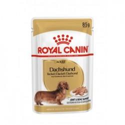 Royal Canin Dachshund 12xSaszetka