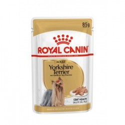 Royal Canin Yorkshire Terrier 12xSaszetka