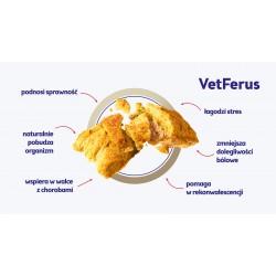 John Dog VETFERUS przysmaki wspomagające organizm 90g