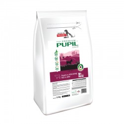 PUPIL Premium Junior Mini bogata w wołowinę