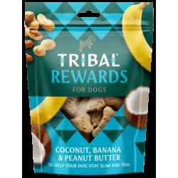 TRIBAL Rewards Kokos, Banan i Masło Orzechowe 125g - Ciastka dla psa domowej produkcji