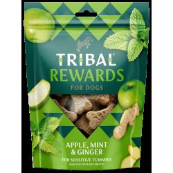 TRIBAL Rewards Jabłka, Imbir i Mięta 125g - Ciastka dla psa domowej produkcji