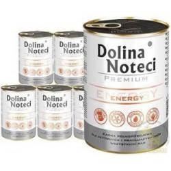DOLINA NOTECI PREMIUM ENERGY