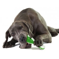 Petstages Finity Dental - gryzak dentystyczny dla psa