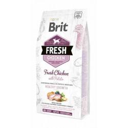 Brit Fresh Karma dla szczeniąt Kurczak/Ziemniaki