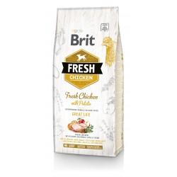 Brit Fresh Karma dla dorosłych psów kurczak/ziemniaki